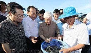 Kiên Giang kiến nghị cần sớm có chủ trương thành lập thành phố Phú Quốc
