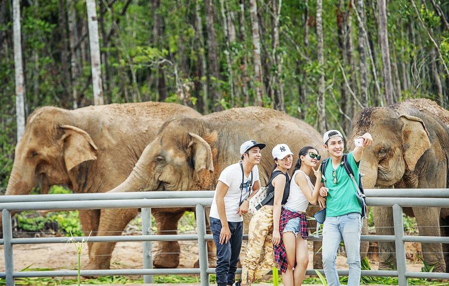 Vinpearl Safari Phú Quốc